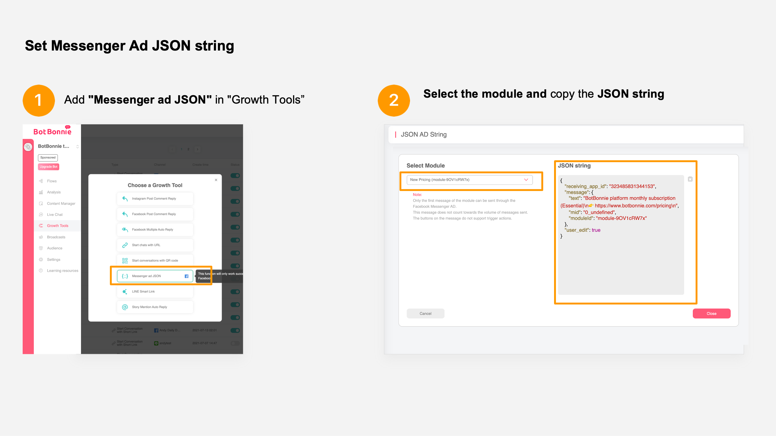copy the content of the JSON string on the right